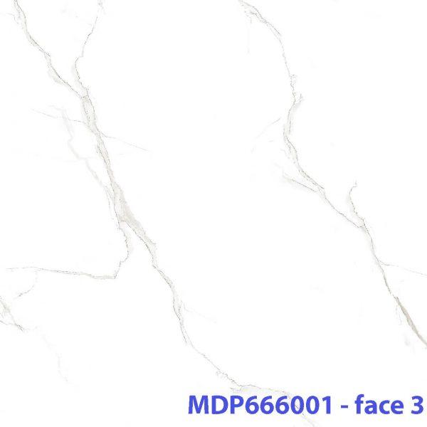 MD P666001 _face3 xxx