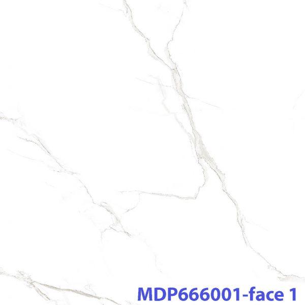 MD P666001_face 1 xxx