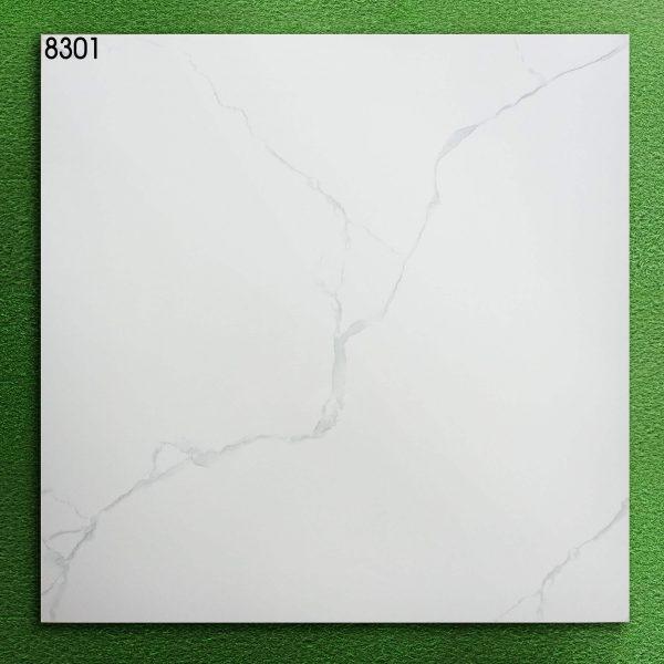 8301 (2)